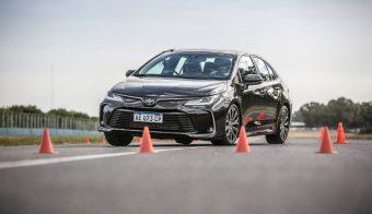 Nuevo Corolla Master Test alce